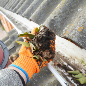 Cleaning out your gutters is one of our favorite mosquito control tips for homeowners in Fort Worth, TX.