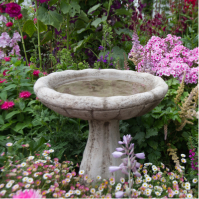Emptying out your birdbath every week is another great way to prevent mosquitoes in your Texas lawn.