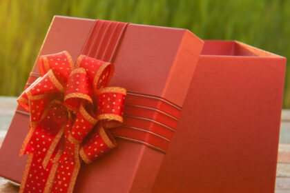 Stop The Itch: Give The Gift Of A Mosquito-Free Summer